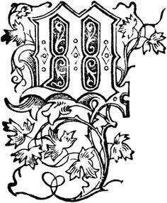 Decorative Floral M
