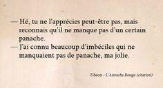 Aurochs Rouge - Chimeterre T1 par Tibéon Citation 04
