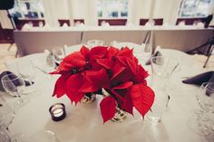 Simple Poinsettia centerpiece