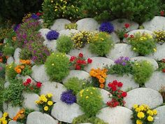 Retaining wall stuffed with annuals and a few small perennials for color