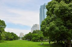 It is a park of Odaiba. And green office buildings co-exist. It is a very beautiful office district.