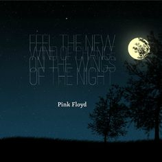 Feel the new wind of change on the wings of the night. ~ Pink Floyd
