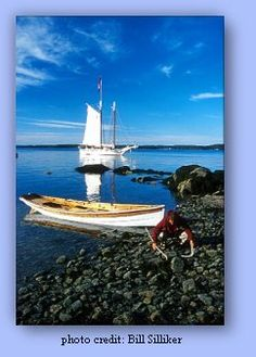 Maine Sailing Adventures Aboard the Schooner Isaac H. Evans! :  SAIL BOAT ACCOMODATIONS