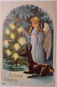 Vintage Christmas Postcard - Angel by riptheskull, via Flickr