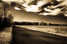 Amish Road  By David Stine