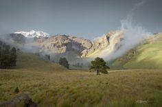 Los tormentos oníricos de un fotógrafo que no se cansa de viajar por México.