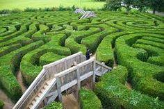 Billedresultat for maze garden