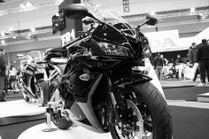 This, this is my love. CBR600RR