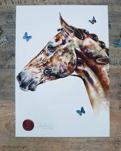 Horse watercolour painting by chloé Watercolor Horse, Watercolour Painting, Chloe Brown, Wax Stamp, Brown Art, London Art, Contemporary Artwork, Animal Paintings, Pet Portraits