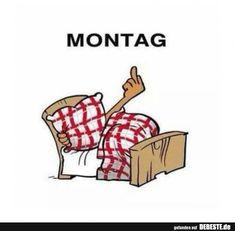 Montag!   Lustige Bilder, Sprüche, Witze, echt lustig