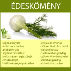 Herb Garden, Doterra, Vitamins, Health Fitness, Food And Drink, Healthy Eating, Vegetables, Plants, Medicine