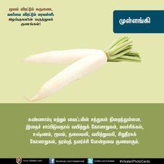 மூலம் போக்கும் கருணை, வலியை விரட்டும் மரவள்ளி... கிழங்குகளின் மருத்துவக் குணங்கள்! #VikatanPhotoCards Recipes In Tamil, Natural Health Tips, Health Facts, Health Remedies, Photo Cards, Health And Beauty, Bob, Nutrition, Ayurveda