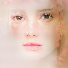 """bec winnel's photoreal colored pencil drawings  """"Just so sensitively and beautifully drawn. A gorgeous drawing..hm""""."""