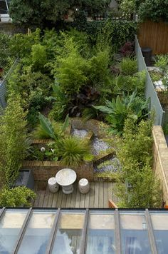 Urban jungle, Bow, London. Garden Design by Amanda Patton.