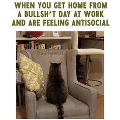 Antisocial AF...