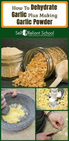 Step by step instructions on how to dehydrate garlic and then make garlic powder. Includes tips for peeling garlic and storing dehydrated garlic. #beselfreliant via @sreliantschool