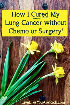 How to Cure Cancer without Chemotherapy or Surgery- Kristin cured an advanced form of lung cancer using non toxic methods. 2 years later she is still cancer free! She shares what she did in detail at the following post. #LiveLikeYouAreRich #Cancer #CancerCure
