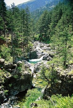 """""""Arkoudorema River"""" which means Bear's ravine, is de main atributary of Aoos River, in de nucleous of Pindus National Park, in de heart of Valia Calda, Grevena, Macedonia_ Greece"""