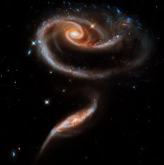 Spectacular photos from Space A 'rose' made of galaxies