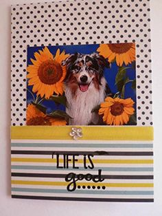 AUSTRALIAN SHEEPDOG dog GREETINGS Card Happy Anniversary handmade Happy Birthday Chillax Friendship Love Sunflowers (A6/C6) -- Awesome products selected by Anna Churchill