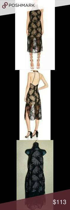 NWT Finders Keepers Palm Heirloom Dress New with tags dress. Beautiful black dress with nude slip. Palm tree leaves throughout. Size Medium. Finders Keepers Dresses Midi