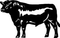 Black Angus Steer/Cow Cornhole Sticker,Decal