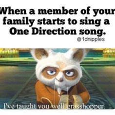 I have taught my brother all of their first AND last names....SO PROUD. And yesterday, I caught my dad humming One Thing. IT WASN'T EVEN WMYB....  -H