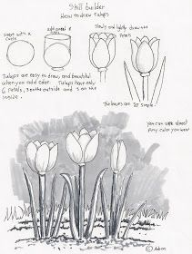 Sketching Lessons For Beginners at PaintingValleycom Explore drawing tutorials for beginners - Drawing Tutorial Tulip Drawing, Basic Drawing, Drawing Tips, Drawing Classes, Drawing Poses, Drawing Art, Flower Drawing Tutorials, Drawing Tutorials For Beginners, Art Tutorials
