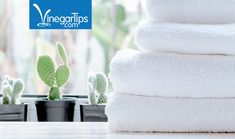 How often should you wash your bathroom towels?  According to experts, this is how often you should wash your towels.