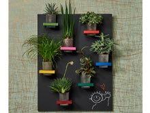 Ratgeber Hängendes Pflanzenregal: Selbstgebautes Pflanzenregal
