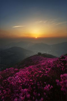 ♥ watching a wonderful sunset when you're on a hiking tour