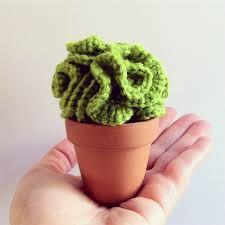 cactus crochet - Buscar con Google
