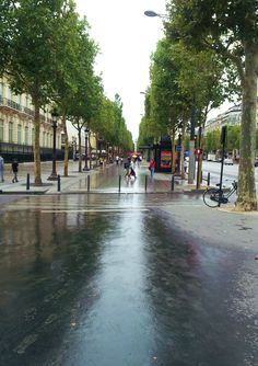 Rainy day on the Champes Elese, Paris.