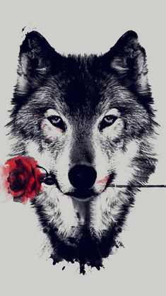 'The Wolf With a Rose' iPhone Case by Shaneguru Wallpaper Lobos, Wolf Wallpaper, Iphone Wallpaper, Tattoos In The Workplace, Werewolf Stories, Wolf Book, Wolf Tattoos, Tatoos, Non Fiction