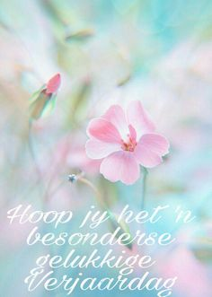 Find images and videos about pink, flowers and pastel on We Heart It - the app to get lost in what you love. Pastel Flowers, Pastel Colors, Beautiful Flowers, Soft Colors, Flowers Nature, Frühling Wallpaper, Flower Wallpaper, Bloom, Jolie Photo