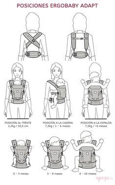 Posiciones mochila Ergobaby Adapt