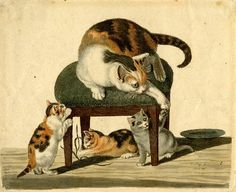 Gottfried Mind [Swiss artist (1768-1814), known by the nickname Katzen-Raffael (The Raphael of Cats)] - Cat family playing around a stool, 1799-1850 (British Museum, London)