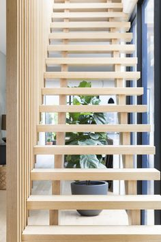 Stairs   Staircase   Timber Stairs   Highland Oak   Timber Screens   Feature   Contemporary   Interior Design   Architecture   Balustrade