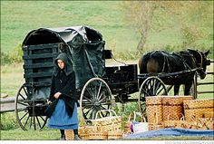 Google Image Result for http://calorielab.com/news/wp-images/post-images/amish-girl-and-wagon.jpg