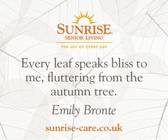 Every leaf speaks bliss to me, fluttering from the autumn tree. Best Inspirational Quotes, New Quotes, Autumn Trees, Autumn Leaves, Sunrise Quotes, Emily Bronte, Senior Living, Knowing You, Bliss