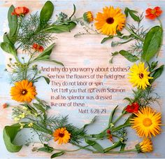 (1) Flaminkevlei WF (@FvWaterF) | Twitter Edible Flowers, Pink Flowers, Yellow Cottage, Garden Illustration, Calendula, Romantic, Graphic Design, Table Decorations, Marigold
