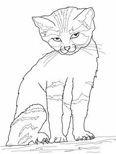 cat_11 Cats coloring pages for teens and adults | рисунок ...