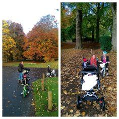 Camperdown on the bikes. Whoop! #park #autumn #family #bikes #Camperdown by krisdevlin