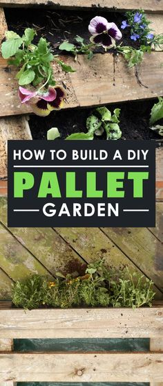europalette garten Learn how to build a SUPER CHEAP DIY Pallet Garden and grow a ton of leafy greens, herbs, and veggies against any wall in your yard! Vintage Garden Decor, Vintage Gardening, Organic Gardening, The Simple Life, Diy Garden Projects, Diy Pallet Projects, Vertical Vegetable Gardens, Vegetable Gardening, Pallets Garden
