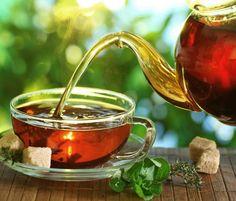 10 melhores chás para emagrecer - Bolsa de Mulher