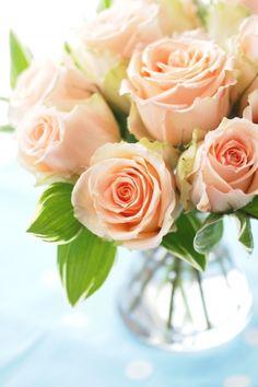 .roses belong to melbourne! www.floristmelb.com.au