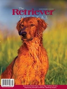 Mark L Atwater Photography Hunting Magazines, A Decade, We The People, Dogs, Photography, Animals, Cover, Fotografie, Animales