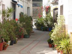 La Mamola Backstreets June 08b   por costatropicalproperty Sidewalk, Explore, Plants, Side Walkway, Walkway, Plant, Walkways, Planets, Pavement