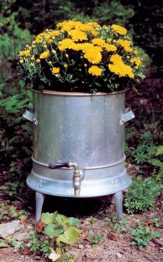 Crazy Containers For Gardening