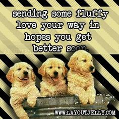 Get Well Wishes Sayings | visit s1081 photobucket com